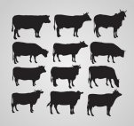 silhouettes-of-cow-23-2147518630